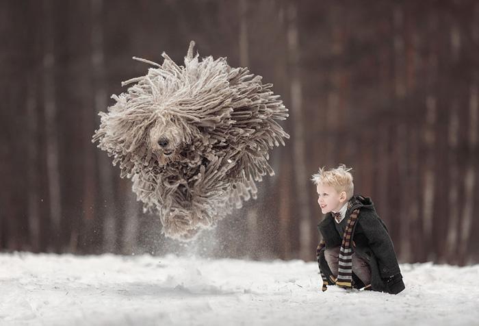 Большие собаки и маленькие детки: душевные фотографии малышей с их огромными защитниками и друзьями