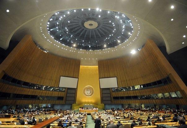 Подписываем петицию: Обращение в ООН о признании независимости ДНР и ЛНР