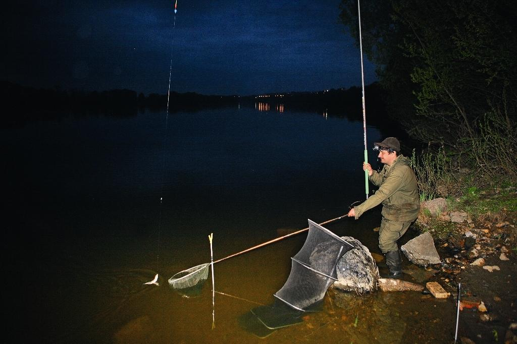 кого и как ловить ночью на реке
