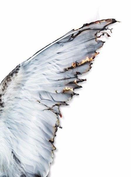 Не(ангельская) работа