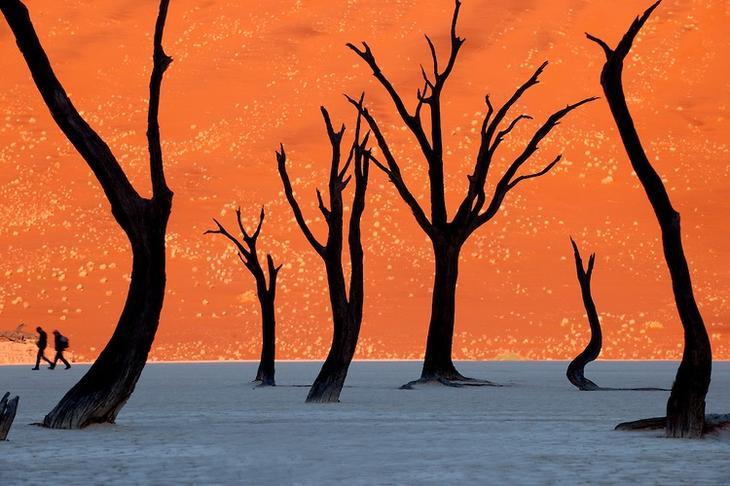 Сюрреалистические пейзажи Мертвой долины в Намибии
