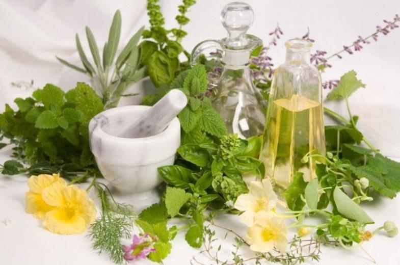 Лечение фитотерапевтическими средствами дерматита и экземы