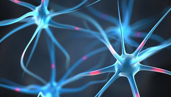 Ученые МГУ нашли способ остановить болезнь Альцгеймера на ранней стадии