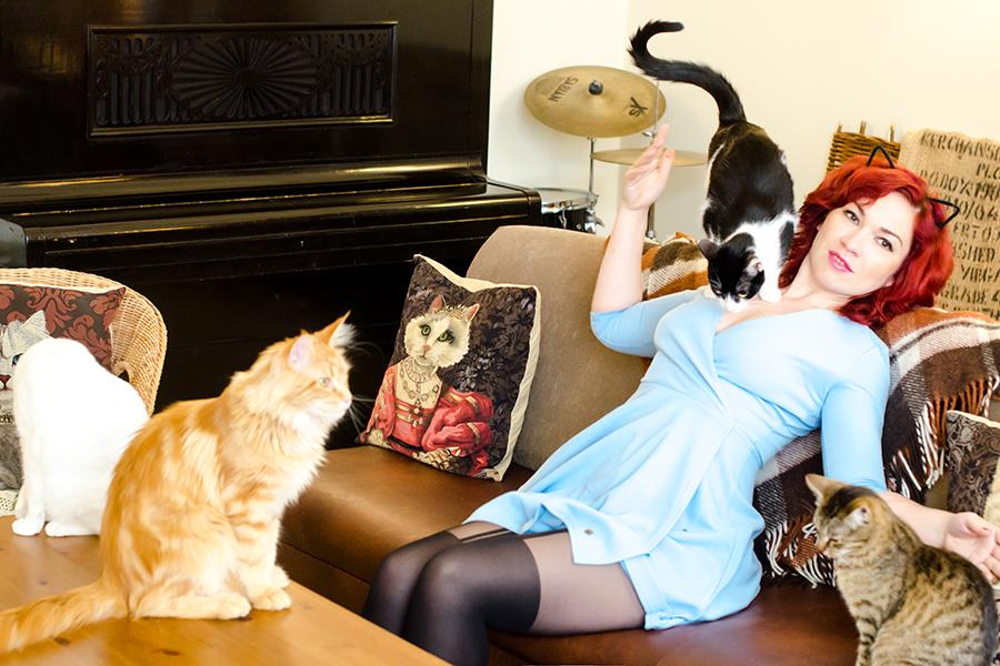 Будешь жить с котиками!