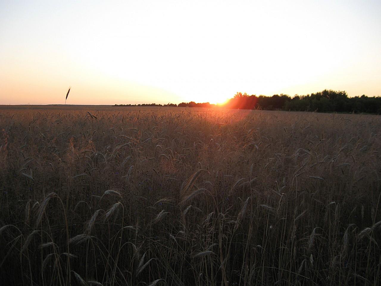 Солнце клонится за горизонт