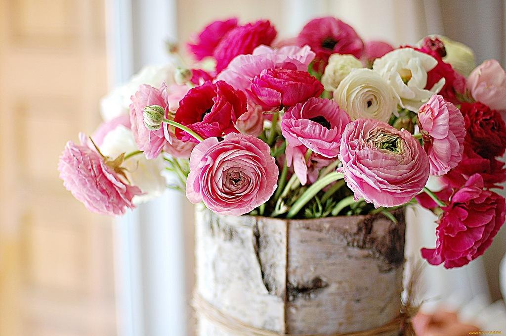 Пионовидные розы для открытки 739