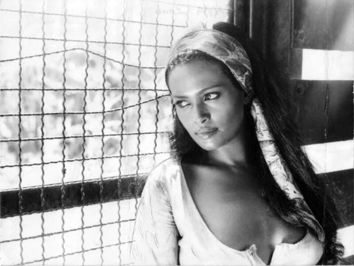 Одна из самых красивых итальянских актрис   Фото: kino-teatr.ru