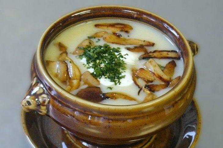 Какие супы можно приготовить из грибов