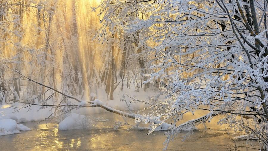 Зимние туманы...