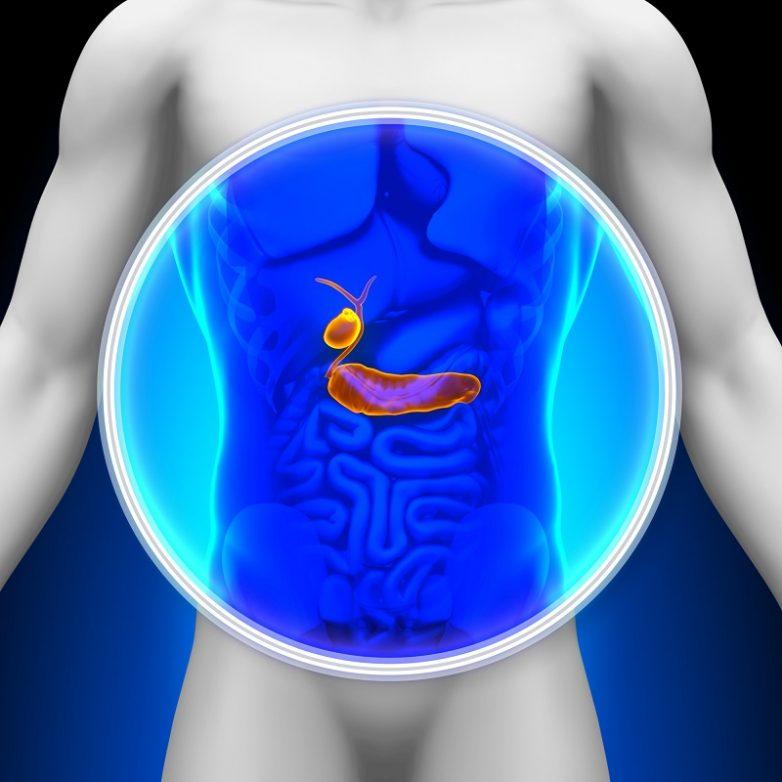 Продукты питания, которые активируют отток желчи