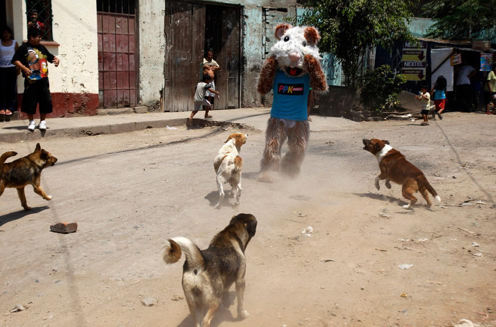 peru14 Жизнь в Перу