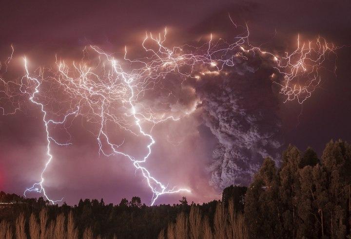 «Апокалипсис», Франциско Негрони Лучшие фотографии дикой природы 2014 года