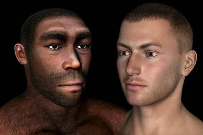 Зачем человеку брови: ученые все объяснили