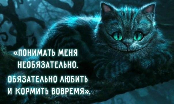 28 мудростей Чеширского Кота