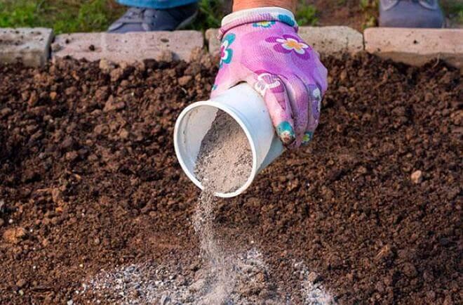 Натуральное супер удобрение и средство борьбы с вредителями