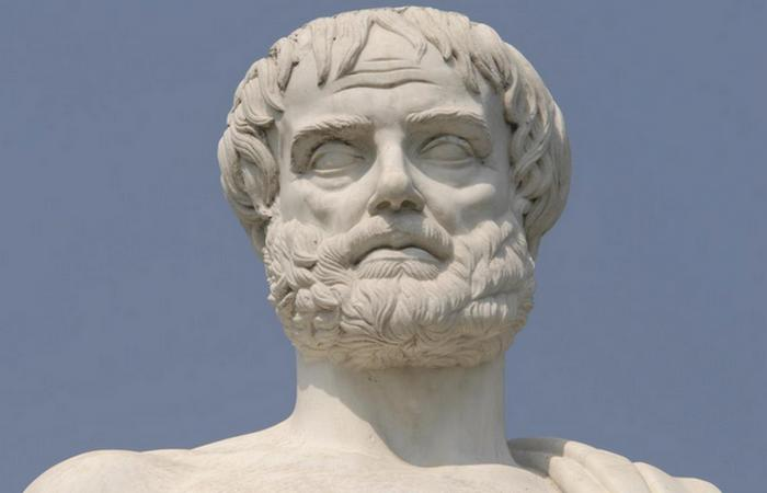 Бюст Великого Аристотеля. / Фото:kinflexetuttech.tumblr.com