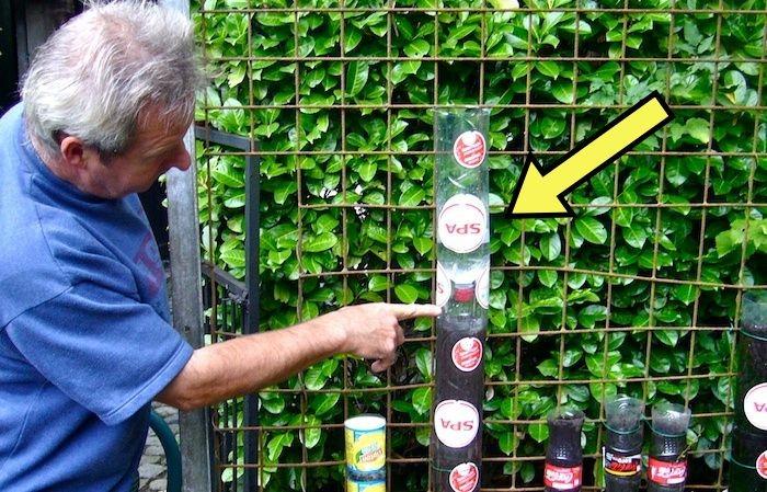 У пенсионера получилось обустроить огород всего на 1 кв м, и повторить его эксперимент можно даже на балконе