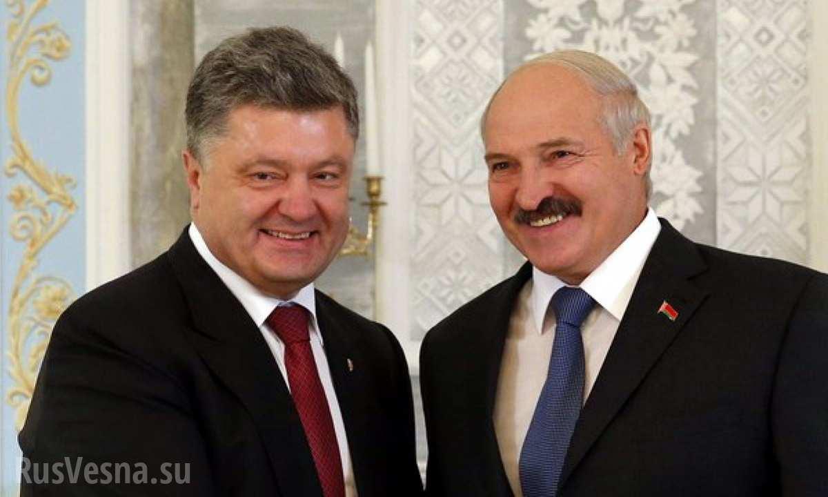 По-соседски: о чём будут говорить в Киеве Александр Лукашенко и Пётр Порошенко