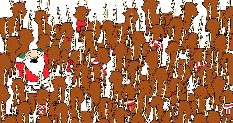 Если сможете отыскать медведя на этой картинке, Дед Мороз подарит вам 100 биткоинов