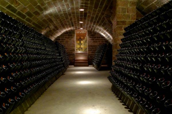 Вино играет всеми красками