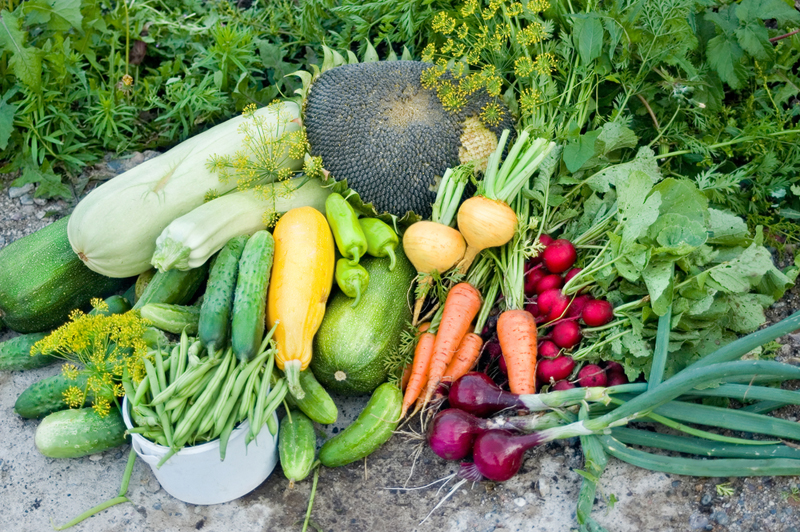 Садоводы рассказывают, как эффективно сформировать грядки и цветочные клумбы, чтобы урожай был максимальным.