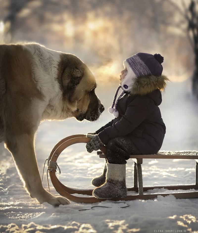 Прекрасные фотографии детей с животными в деревне