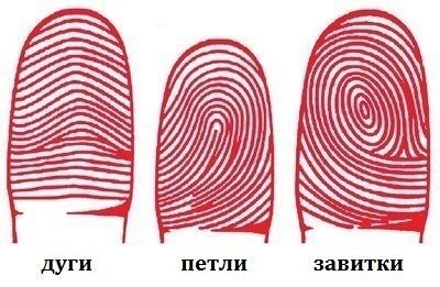Характер по узорам отпечатков пальцев