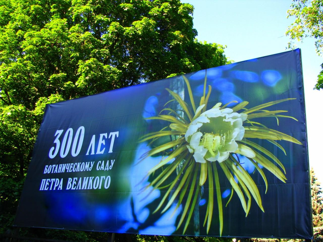 Юбилейный год для Ботанического сада Санкт-Петербурга