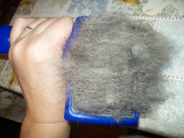 Как свалять собачью шерсть в домашних условиях