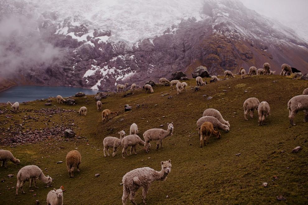 Фантастически красивые виды Боливии и Перу в фотографиях путешественницы Sonia Szóstak