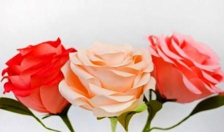 МАСТЕРИЛКА. Делаем огромные цветы