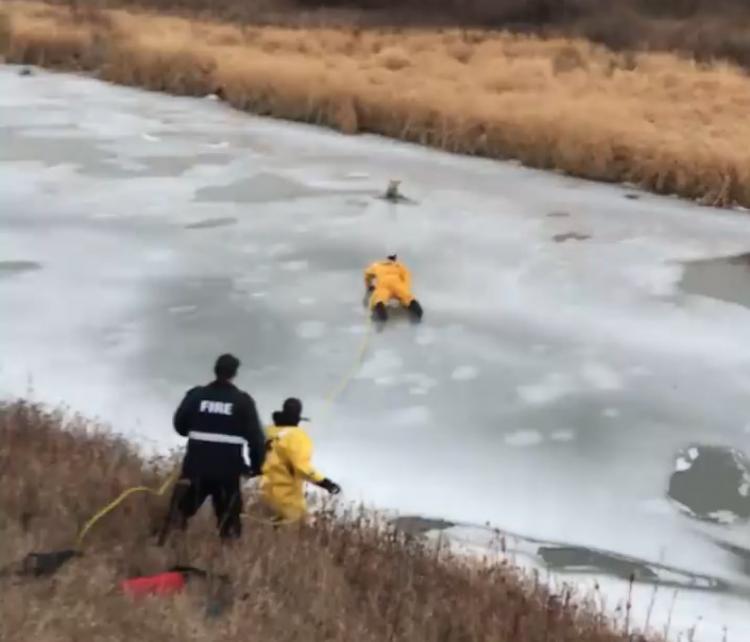Спасатель отправился за провалившейся под лед собакой, но вдруг сам оказался в стылой ловушке