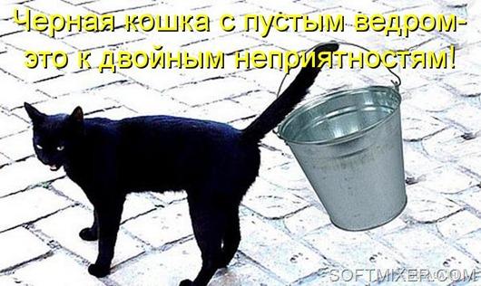 Кот с пустыми ведрами