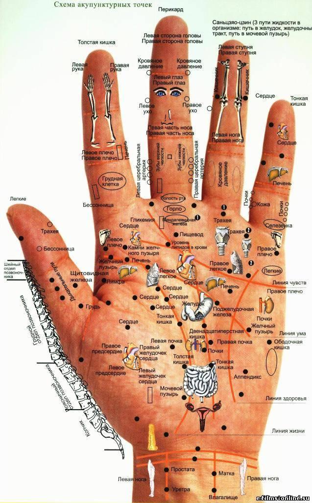 Волшебные точки на руке человека