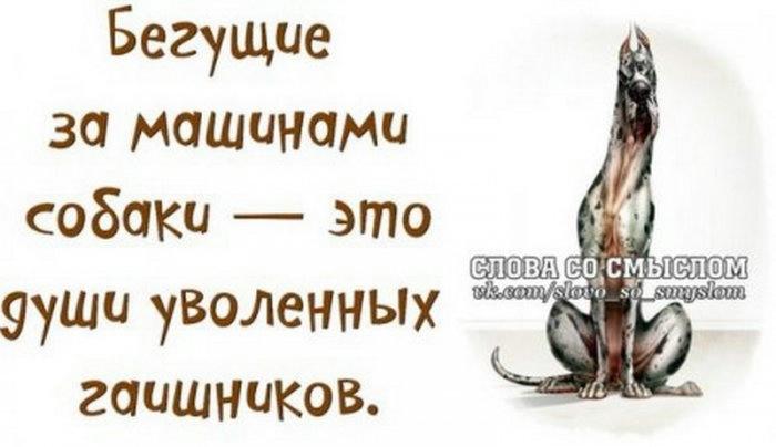 Слова со смыслом ...:) (Ч.2)