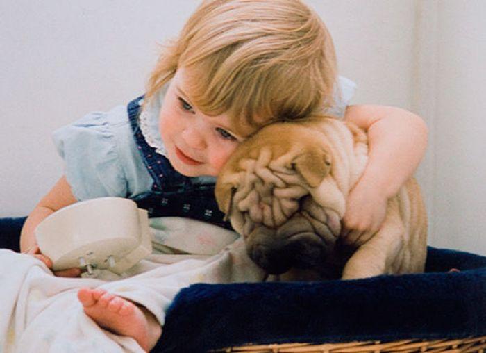 """Детишки и животные (62 фото) """" AllDay - закачаешься по полно…"""