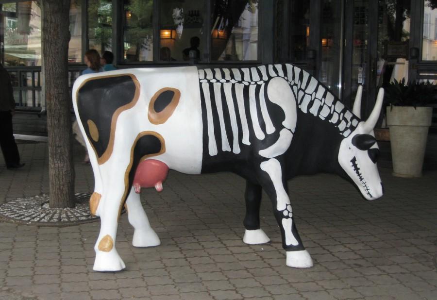 Полосатые коровы, пластик эк…