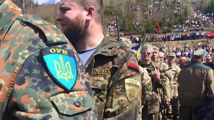 Банда ОУН пыталась выдать себя за ополченцев ДНР, но попалась СБУ