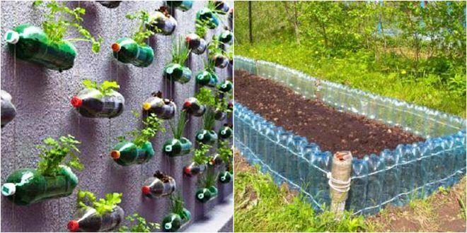 Всю зиму он собирал бутылки и свозил их на дачу… Соседи посмеивались, но весной участок было не узнать