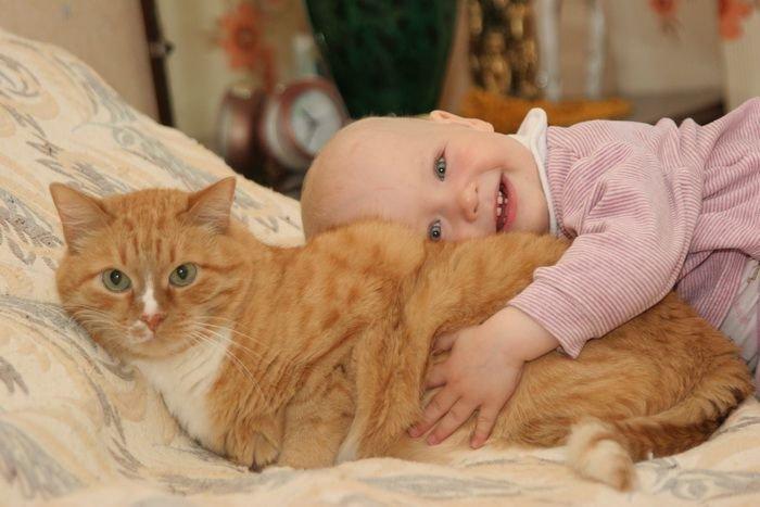 Котик укладывает малыша