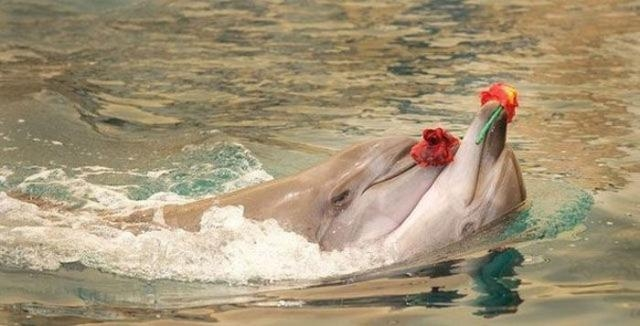 эмоциональные снимки трогательные фотографии