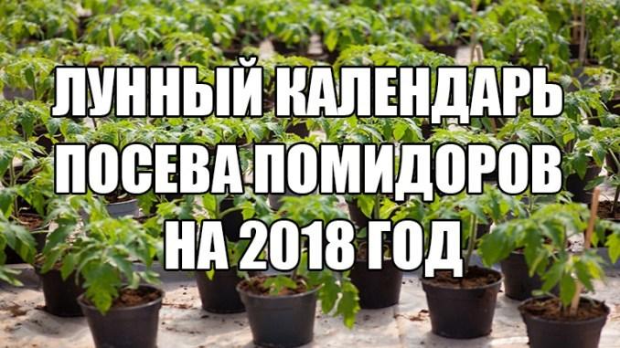 Лунный календарь посева помидоров на 2018 год
