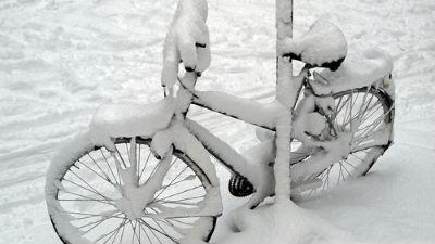 Из-за сильных снегопадов в США погибли 6 человек