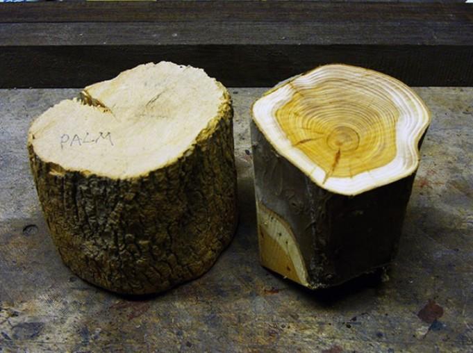 Как сделать объектив из дерева своими руками