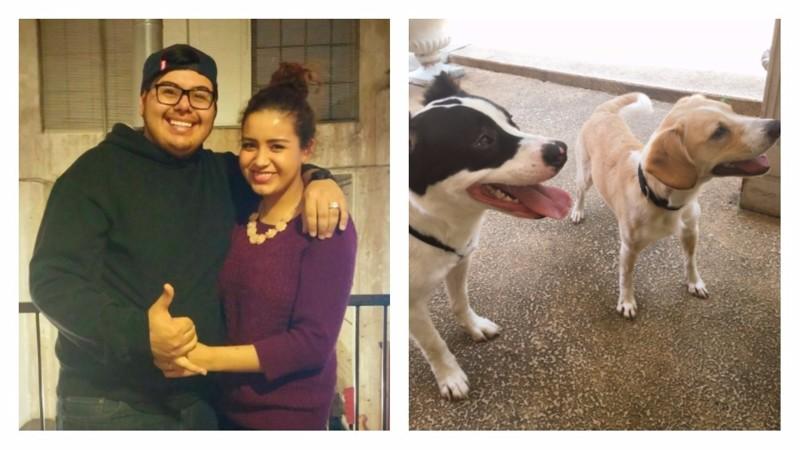 У этой семейной пары есть традиция каждый год дарить друг другу щенка в честь годовщины свадьбы в мире, годовщина, животные, люди, подарок, свадьба, собака, щенок