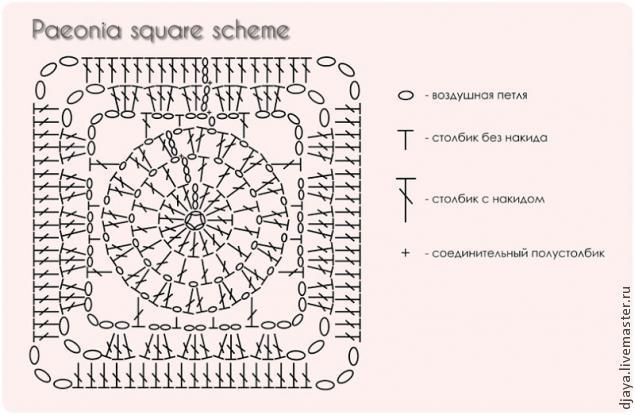 Квадратный мотив Paeonia