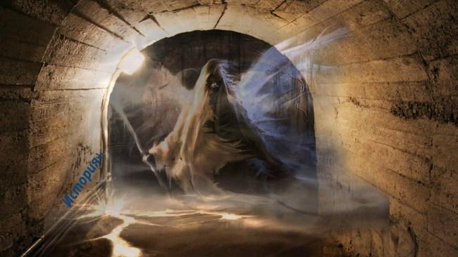 Тайные подземные пещеры Санк…