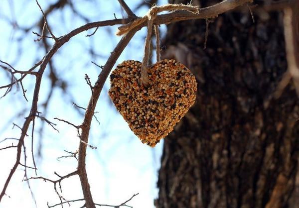 Сердечко из зерновой смеси. Фото с сайта coming-home.ru