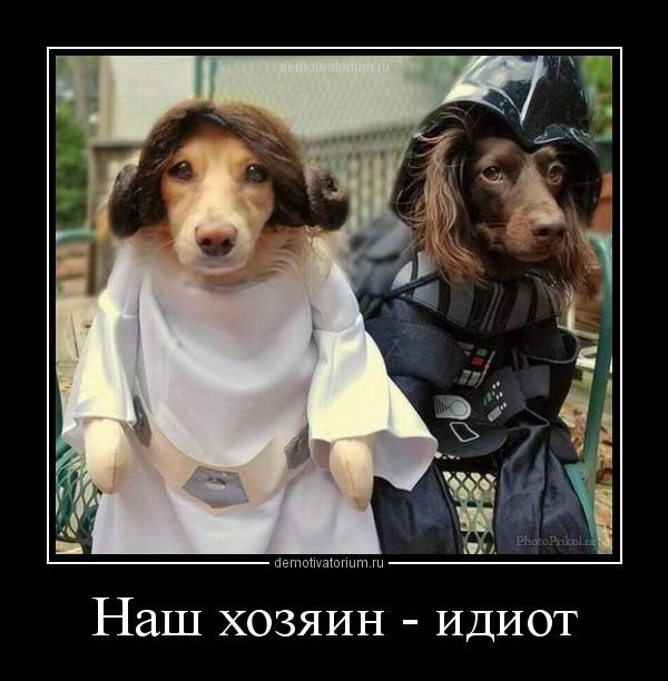 http://mtdata.ru/u12/photoA81D/20683120554-0/original.jpg#20683120554