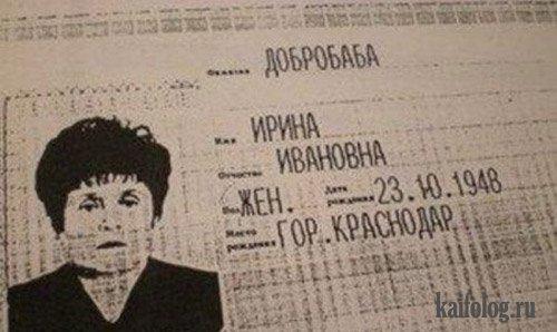 Прикольные паспорта и документы (25 фото)